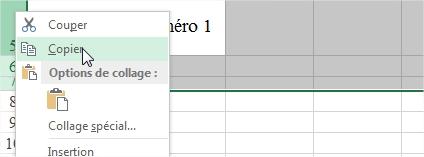 Copie des lignes et conservation des hauteurs Excel