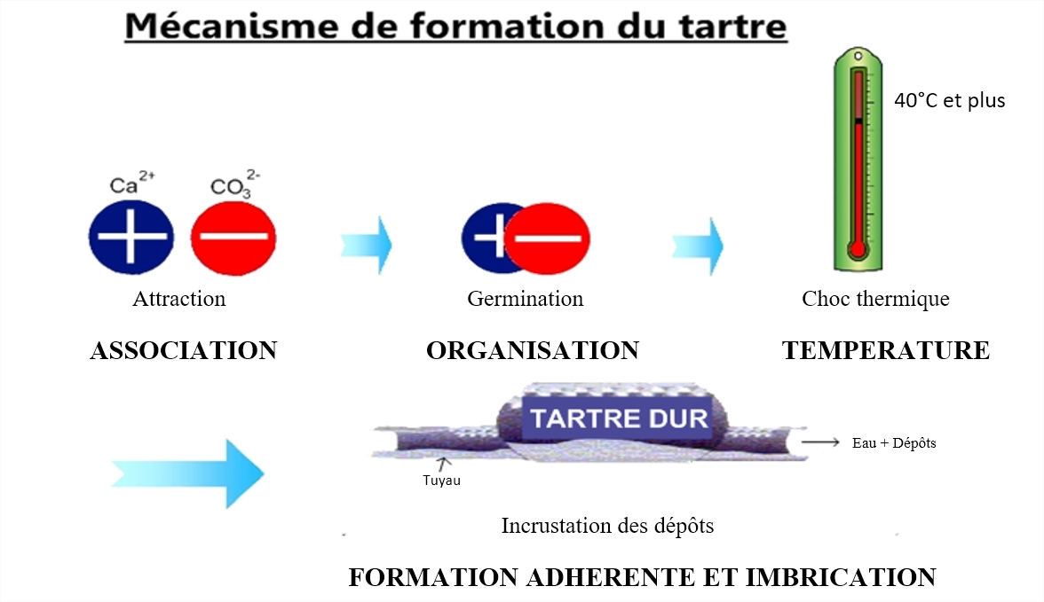 Mécanisme de formation du tartre en 3 étapes